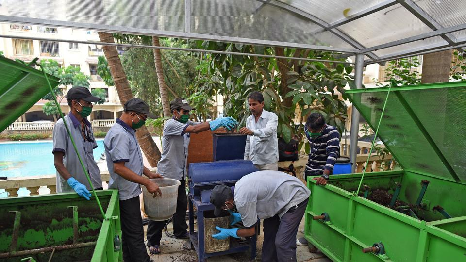 Degree in hand, 4 Mumbai youngsters got their hands dirty; 3 years later, they lead the way
